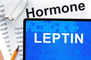 https://todayshealthnutritionsecrets.com/secret-leptin-foods/
